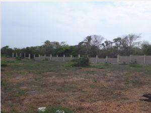 Lote para Venta en el sector de Bayunca 1606788_Portada_3