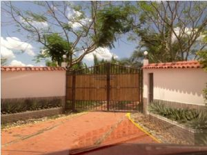 link and photo to view Finca - 24036